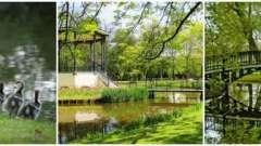 «Вондела» - парк, створений для єднання з природою