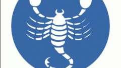 Знак зодіаку скорпіон. Чоловік. Характер